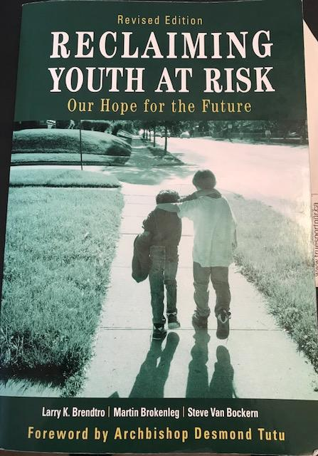 Reclaiming Youth At Risk Book Cover